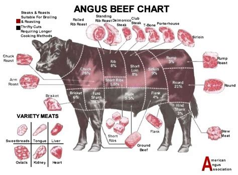 beef chart the american cowboy chronicles cattle diagrams retail beef cuts chart