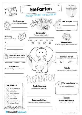 Auf diesem ausmalbild sieht dich der elefant genau von vorne an. Referat Elefant Bilderzum Ausmalen - Das Grundschullexikon ...