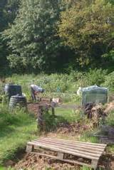 Allotments  A Great Way To Grown Your Own Vegetables  Down The Lane