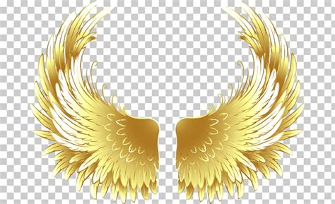 high quality wings clipart colorful transparent