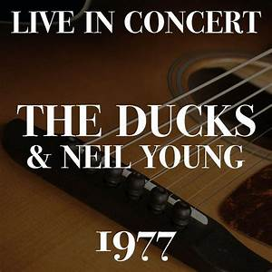 Live In Concert The Ducks & Neil Young 1977 (Live) - Neil ...