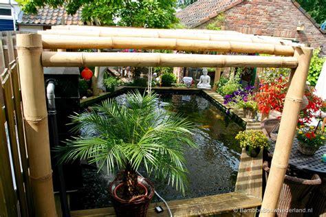 Bamboe Bij Vijvers
