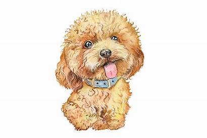 Dog Clipart Watercolor Dogs Painting Thehungryjpeg