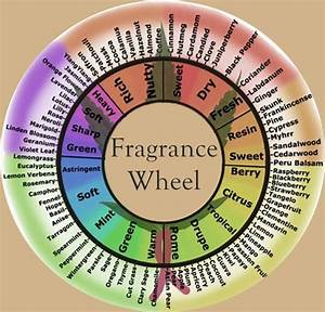 24 Best Fragrances Images On Pinterest
