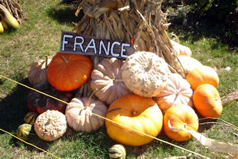 Central Illinois Pumpkin Patches by Central Illinois Life The Great Pumpkin Patch Arthur