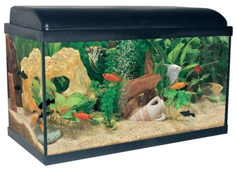 aquarium equipe pas cher aquarium 54 litres aquadream noir animaloo