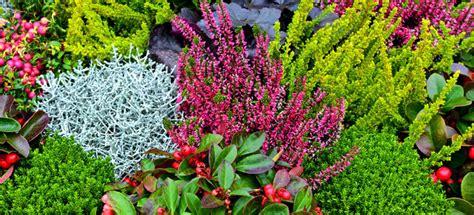 Welche Pflanzen Im Herbst Pflanzen by Grabgestaltung Im Herbst 20 Beispiele Bilder
