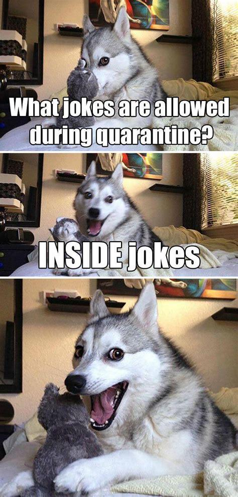 funniest coronavirus memes  jokes barnorama