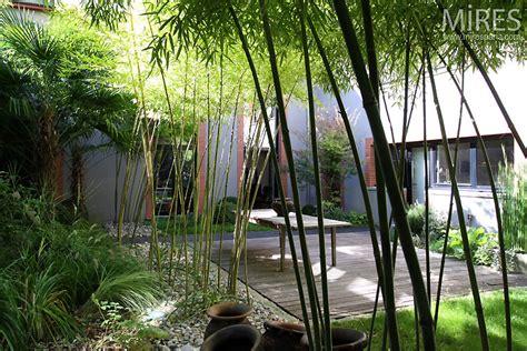 terrace  bamboo  mires paris