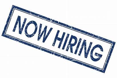 Hiring Job Jobs Background Employment Openings Open