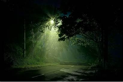 Street Forest Road Wallpapers Dark Background Shining