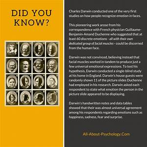 Evolutionary Psychology Information And Resources