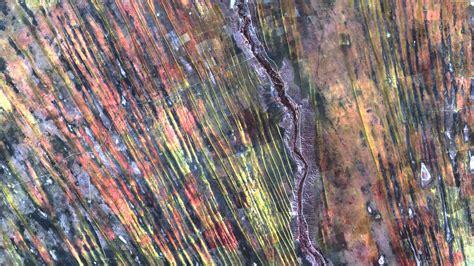 Nasa Viz Earth As Art