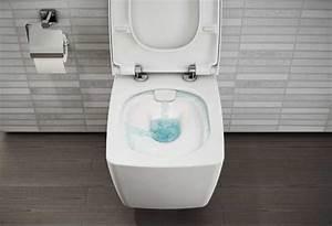 Wc Bidet Kombination : ce qu 39 il faut savoir pour bien choisir une cuvette wc styles de bain ~ Watch28wear.com Haus und Dekorationen