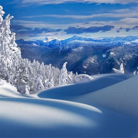Free Download 2012 Winter Ipad Wallpapers