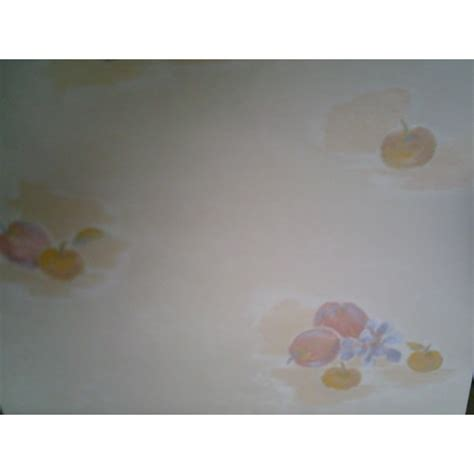 papier vinyl cuisine papier peint vinyl pour cuisine cobtsa com
