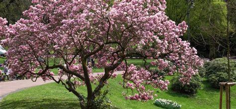 Garten Kaufen Wiesbaden by Die 10 Sch 214 Nsten Gartentermine Im Februar Willkommen In