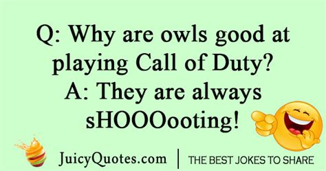 funny owl jokes  puns owl  liners