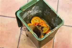 Was Tun Gegen Maden In Der Küche : ungeziefer und maden im biom ll hausmittel gegen sch dlinge in der k che ~ Markanthonyermac.com Haus und Dekorationen