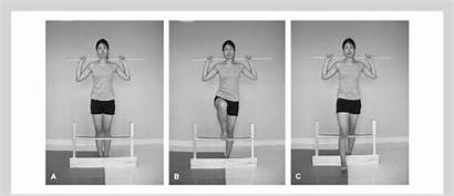 Hurdle Step Screen Movement Functional Position Anterior