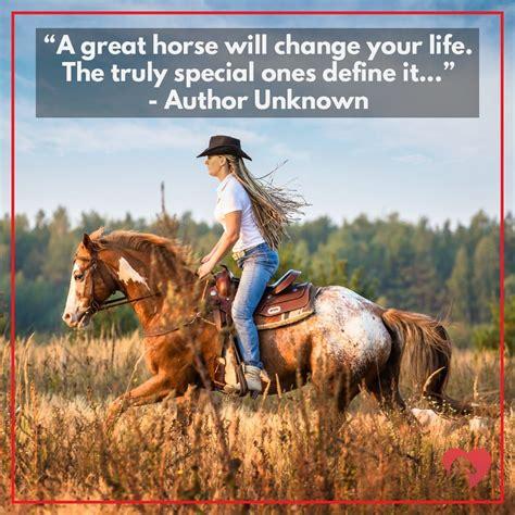 horse quotes greatest horses inspirational owner movies without flying ihearthorses amazing history