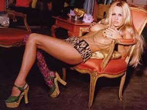 Pamela Anderson X : pamela anderson hot pictures photo gallery wallpapers ~ Medecine-chirurgie-esthetiques.com Avis de Voitures