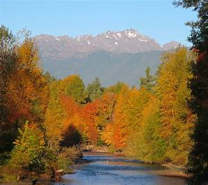 Blog - Vacation Homes on Hood Canal  Fall
