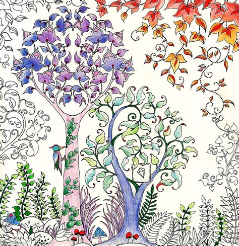 johanna basford sells million copies  secret garden