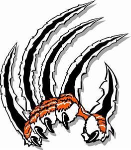 Tiger claws slash graphic art | For me! | Pinterest ...
