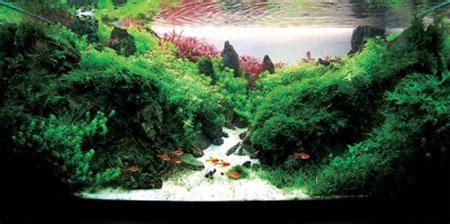 accessoire d 233 co aquarium pas cher