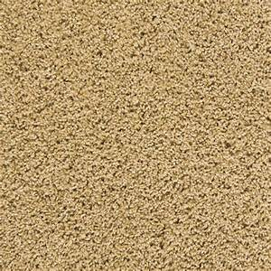 Mix it up series silky smooth empire today for Smooth plush carpet