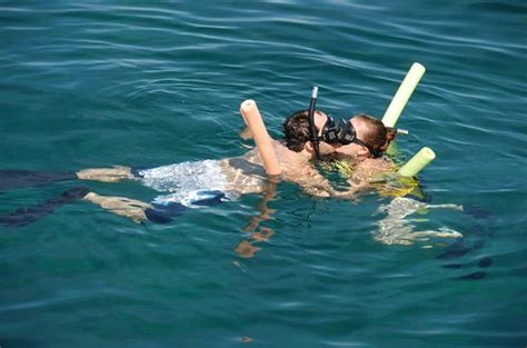 Glass Bottom Boat And Snorkeling by The 15 Best Things To Do In Bermuda 2018 With Photos