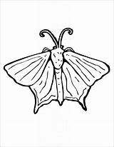 Moth Coloring Printables Pages Coloringbay sketch template