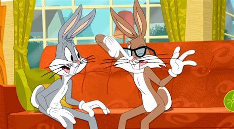 rodney rabbit looney tunes wiki fandom powered  wikia