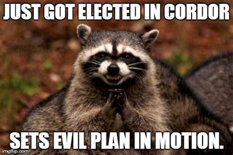 Evil Raccoon Meme - evil plotting raccoon meme imgflip