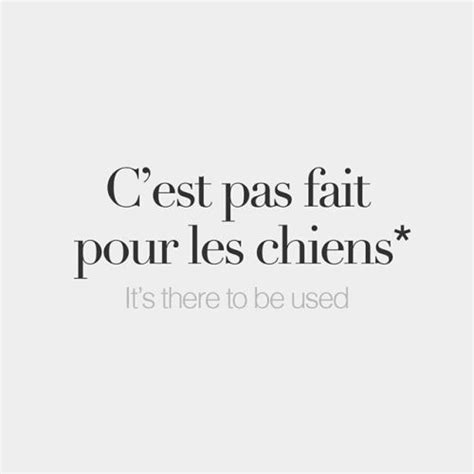 Literally: It's not made for dogs. - C'est pas fait pour ...