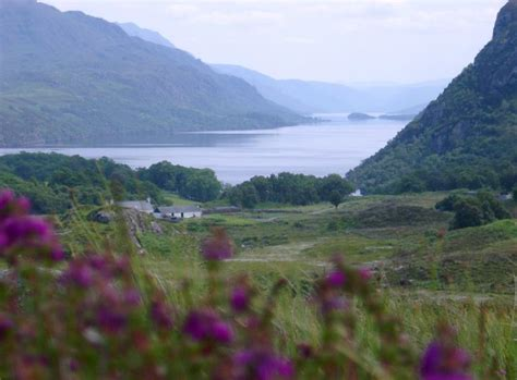 stock photo  remote homestead   scottish loch