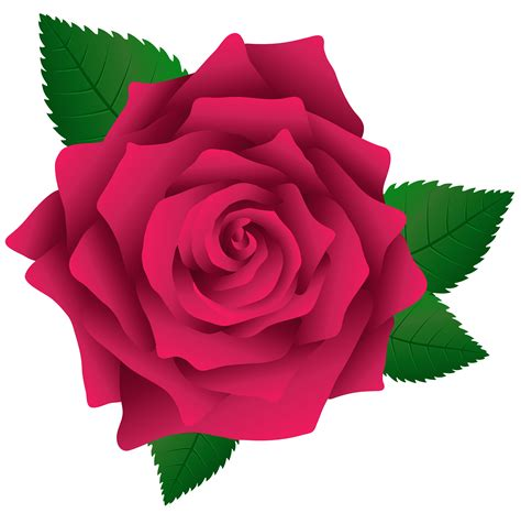 pink roses clipart   cliparts  images