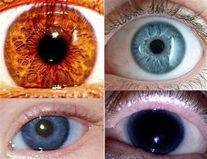 Les Yeux Les Plus Rare : la couleur des yeux la plus rare c 39 est quoi ~ Nature-et-papiers.com Idées de Décoration