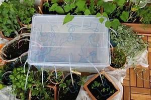 Bewässerungssystem Für Zimmerpflanzen : selbstgebautes bew sserungssystem f r den balkon projekt gartenpatadies pinterest ~ Markanthonyermac.com Haus und Dekorationen
