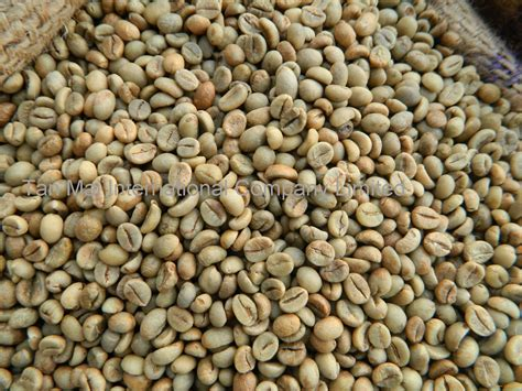 Vietnam Robusta Green Coffee Beans Products,vietnam Metal Coffee Table Legs For Sale Hand Carved Tables Perth Wa Arabica Fruit Shampoo Frame Only Best Arabic London Louisville Glass Sets