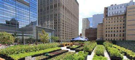 Urban Agriculture  New York Bounty