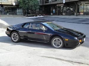 Lotus Esprit Turbo : 1993 lotus esprit turbo se for sale in annapolis maryland united states ~ Medecine-chirurgie-esthetiques.com Avis de Voitures