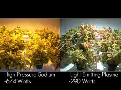 plant experiment light emitting plasma