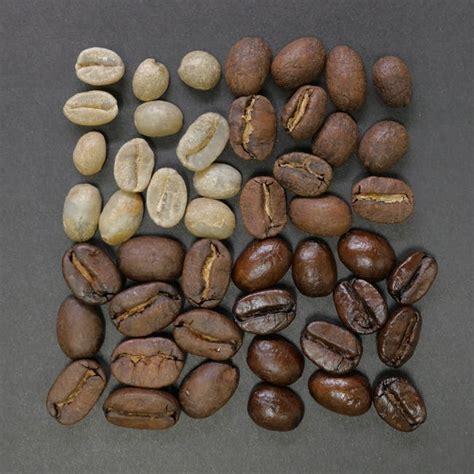 Best coffee beans buyer's guide. The Best Coffee Beans - A Coffee Connoisseur's Guide to Coffee Beans