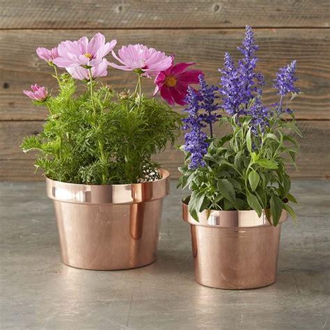 copper flower pot williams sonoma