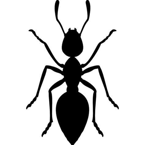 Ant  Free Animals Icons