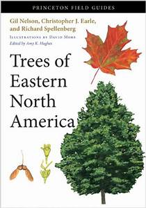 Trees Of Eastern North America  Gil Nelson  Christopher J