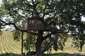 Idée Construction Maison : construction cabane en bois dans les arbres ~ Premium-room.com Idées de Décoration