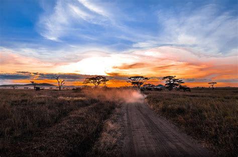 lets travel  world serengeti national park